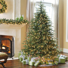 buy-christmas-tree-online